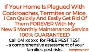 Matt's Termites Services (2)